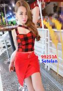 Setelan import 9253A Red